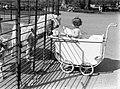 Een peuter in een kinderwagen bij de geiten in Artis, Bestanddeelnr 189-0462.jpg