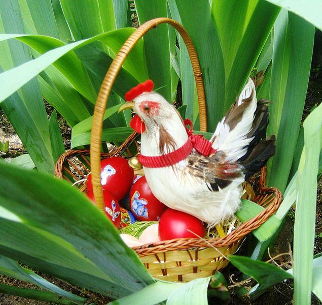 File:Egg hunts.jpg