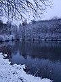 Ein winterlicher Anblick zum Goldbach (Bode) in Blankenburg (2).jpg