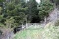 Entrance to plantation in Glen Brown - geograph.org.uk - 1286806.jpg