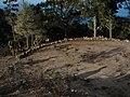 Era de abajo en Casas de Talavera - panoramio.jpg