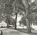 Erling Skakkes gate - Elvegata (1964) (3947497900).jpg