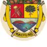 Escudo mun Paez Miranda.PNG