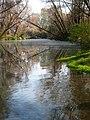 Espejo de agua y vapor - panoramio.jpg