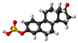 Space-filling model of the estrone sulfate molecule