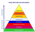 Expanded Maslow's Needs.webp