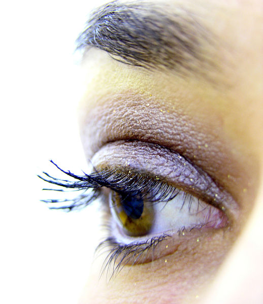 File:Eye lashes with makeup.jpg