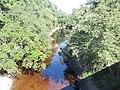 FL near CR 751 Alapaha River east01.jpg