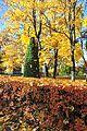 Fall in Peterhof (10242282494).jpg