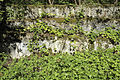 Fallenbrunnen 039-2.jpg