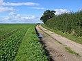 Farm Track - geograph.org.uk - 255291.jpg