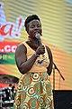 FestAfrica 2017 (36905149193).jpg