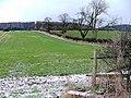Field, Scugdale Farm - geograph.org.uk - 137639.jpg