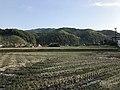 Fields near Uchino-shuku.jpg