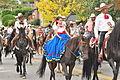 Fiestas Patrias Parade, South Park, Seattle, 2015 - 282 - the horses (21583538392).jpg