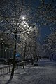 First snow 2014-2015 Moscow (15415193284).jpg