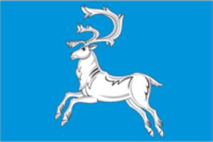 Vilyuysk - Image: Flag of Viluysk (Yakutia)