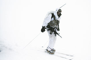 Flickr - Israel Defense Forces - Soldier in the Snow.jpg
