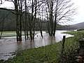 Flooded mill-race - geograph.org.uk - 665158.jpg