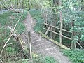 Footbridge in Long Wood, Nuthurst - geograph.org.uk - 414001.jpg