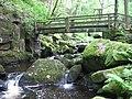 Footbridge over Burbage Brook in Yarncliff Wood - geograph.org.uk - 1455306.jpg