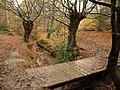 Footbridge over Loughton Brook - geograph.org.uk - 2173455.jpg