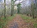 Footpath, Broad Way - geograph.org.uk - 1059429.jpg