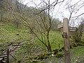 Footpaths meet in Cales Dale - geograph.org.uk - 1805990.jpg