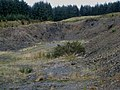 Forest quarry, Clatteringshaws Forest - geograph.org.uk - 325817.jpg