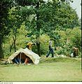Fotothek df n-23 0000082 Feriendorf Stausee Pöhl.jpg