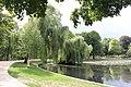 Französischer Garten Insel Trauerweiden 8044.jpg