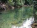 Freshwater pool, Ko Chang - panoramio.jpg