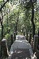 Futian, Shenzhen, Guangdong, China - panoramio (8).jpg