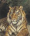 Géza Vastagh - A Reclining Tiger.jpg