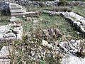 Gërmadhat e katedrales së Artanës 3.JPG
