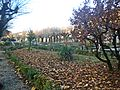 Garden Barberino.jpg