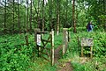 Gate at the entrance to Decoy Woods - geograph.org.uk - 1335616.jpg