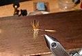 Ginger quill dry fly.jpg