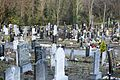 Glasnevin Cemetery, officially known as Prospect Cemetery (4163861469).jpg