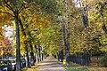 Gliwice - Park Chopina - panoramio (3).jpg