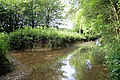 Good Easter, Essex, England - ford over River Can east of Good Easter village 02.JPG