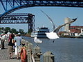 Goodtime III coming up the Cuyahoga.jpg