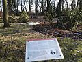 Grab Rodenberg Friedel auf Zentralfriedhof Friedrichsfelde Jan 2017.jpg