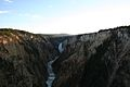 Grand Canyon of Yellowstone 21.jpg