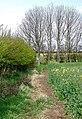 Gravel Hill Farm, Swine - geograph.org.uk - 774287.jpg