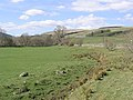 Grazing field - geograph.org.uk - 399707.jpg