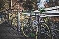 Green bicycle (Unsplash).jpg