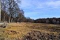 Große Stockwiese Lainzer Tiergarten 001.JPG