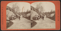 Group in Central Park, from Robert N. Dennis collection of stereoscopic views 4.png