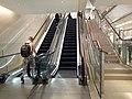 HK 中環 Central 歷山大廈 Alexandra House mall escalators October 2020 SS2.jpg